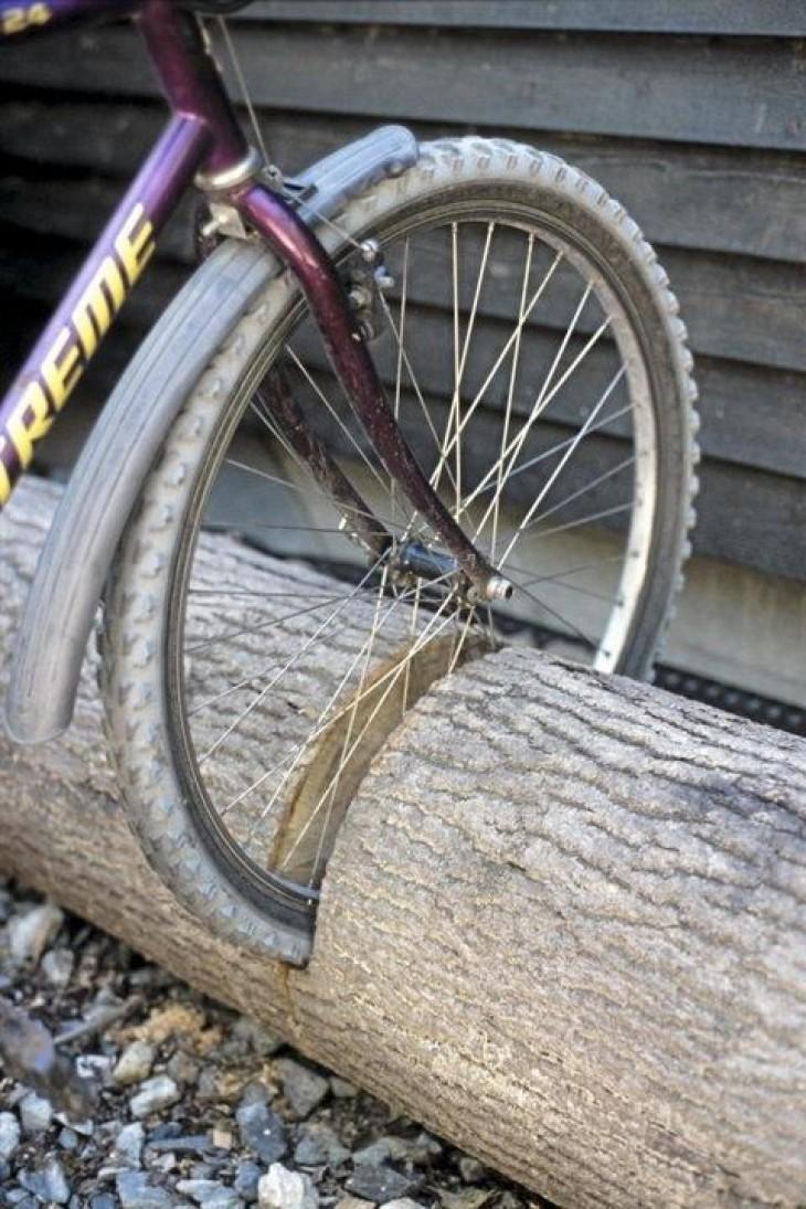 Bedenk goed wat je met een boomstam doet! | Passie voor techniek - EchtWerk.nl